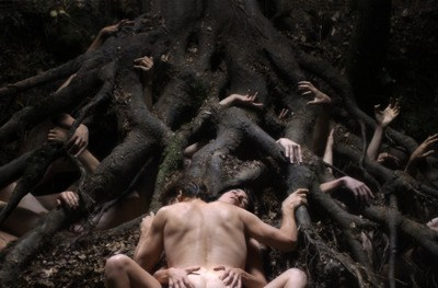 Lars Von Trier lurked in the woods