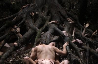 Lars Von Trier s'est tapi au fond des bois